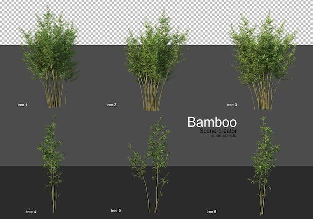 Różne kształty renderowania bambusa