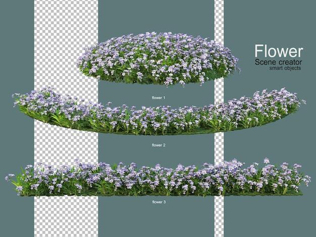 Różne ogrody kwiatowe