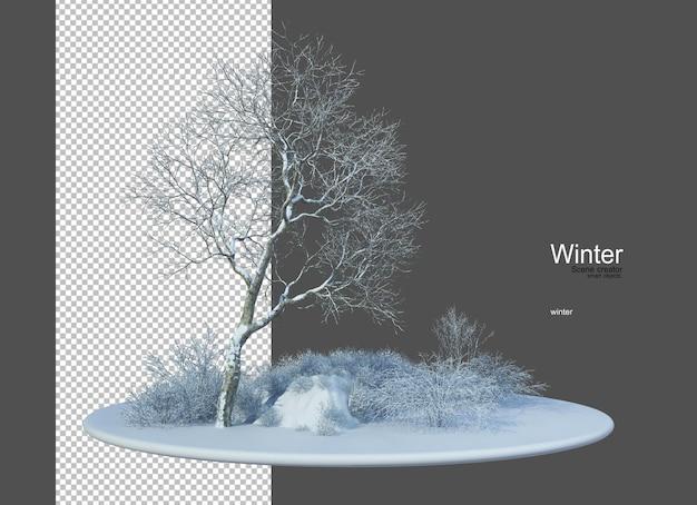 Różne rodzaje drzew zimą