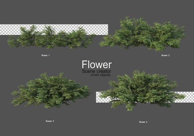 Różne rodzaje kwiatów różne style