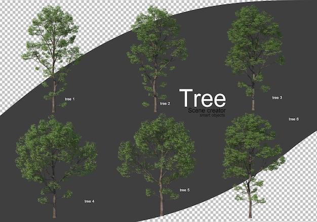 Różne rodzaje renderowania drzew izolowane