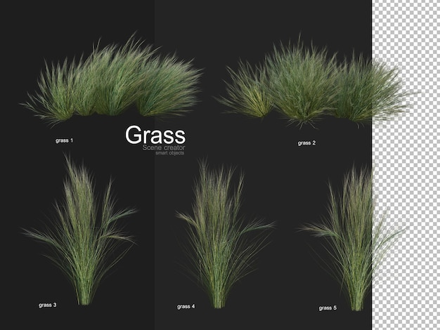 Różne rodzaje renderowania trawy