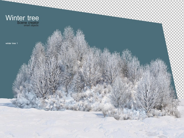 Różne Wzory Drzew Zimowych Na Białym Tle Premium Psd
