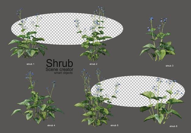 Różnorodność krzewów i kwiatów