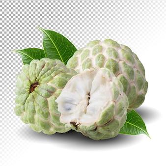Sugar apple lub custard apple na białym tle