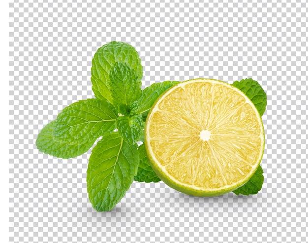 Świeża limonka w plasterkach z liśćmi mięty na białym tle
