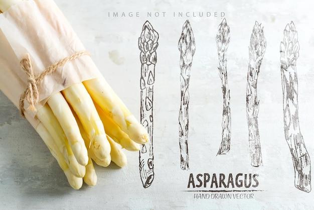 Świeże naturalne organiczne białe szparagi w papierowej pozycji pionowej