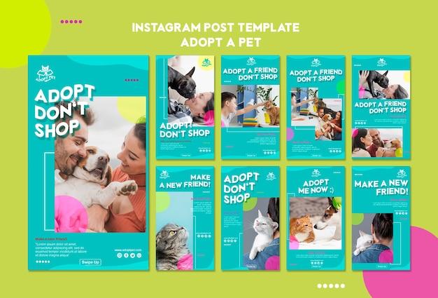 Szablon historii instagram adopcji zwierząt