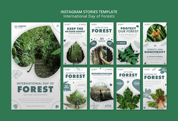 Szablon historii na instagramie w lesie ze zdjęciem