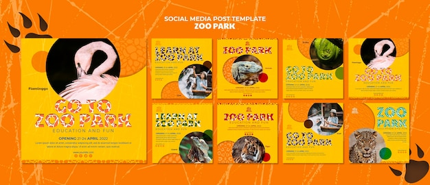 Szablon postów w mediach społecznościowych zoo park