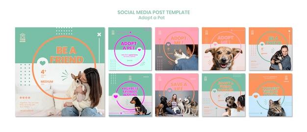 Szablon postu w mediach społecznościowych adoptuje zwierzaka