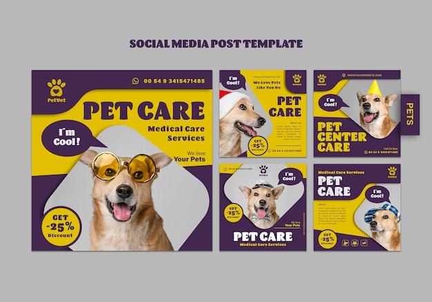 Szablon postu w mediach społecznościowych dotyczących opieki nad zwierzętami