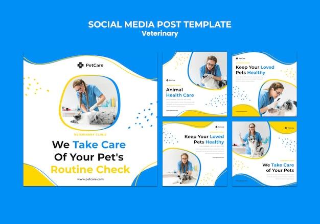 Szablon postu w mediach społecznościowych kliniki weterynaryjnej
