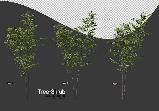 Szeroki wybór renderowania drzew i krzewów