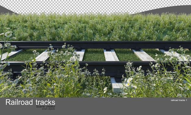 Tory kolejowe w ogrodach kwiatowych i krzewiastych