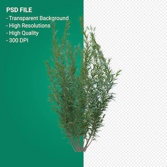 Trawa drzewo renderowania 3d na białym tle