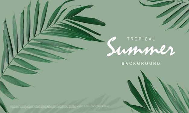 Tropikalna letnia wyprzedaż tło liści palmowych na zielonym tle