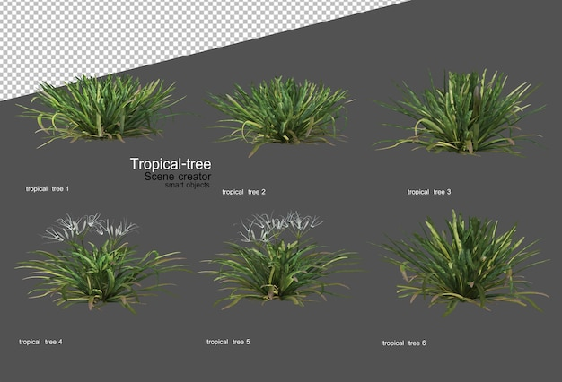 Tropikalne drzewa i rośliny w renderowaniu 3d