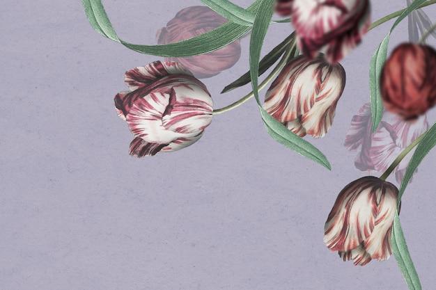 Tulipan granicy psd na fioletowym tle