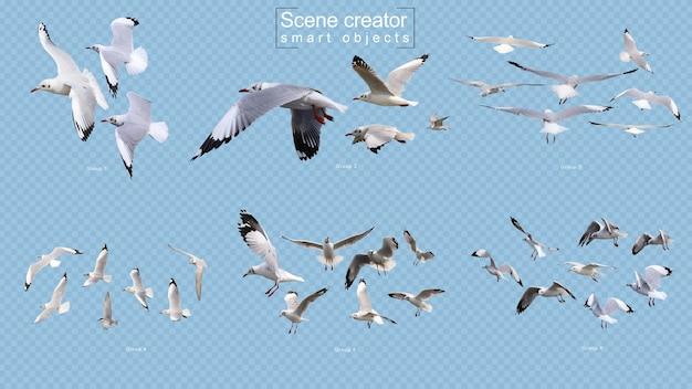 Twórca sceny latające ptaki na białym tle