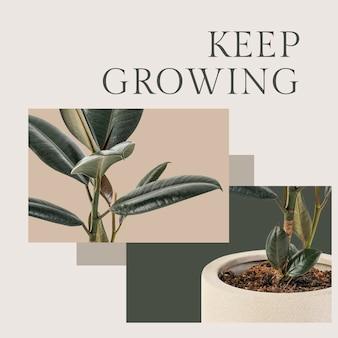 Utrzymuj rosnący szablon botaniczny psd z postem w mediach społecznościowych z gumową rośliną w minimalistycznym stylu