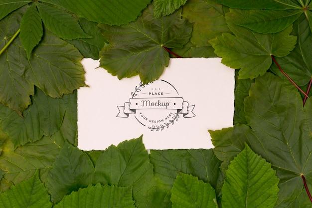 Widok z góry makiety koncepcja liści