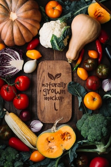 Widok z góry makiety pysznych jesiennych owoców i warzyw