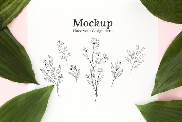 Widok z góry na kompozycję zielonych liści z makietą