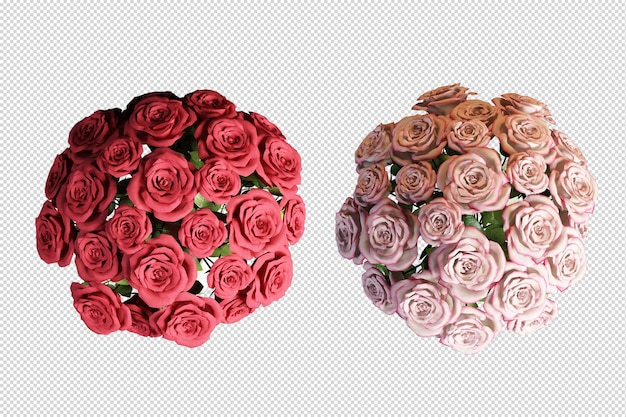 Widok z góry róże kwiat w renderowaniu 3d na białym tle