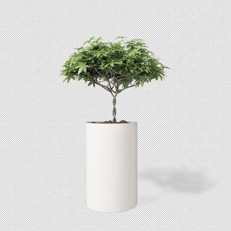 Widok z przodu rośliny w doniczce w renderowaniu 3d