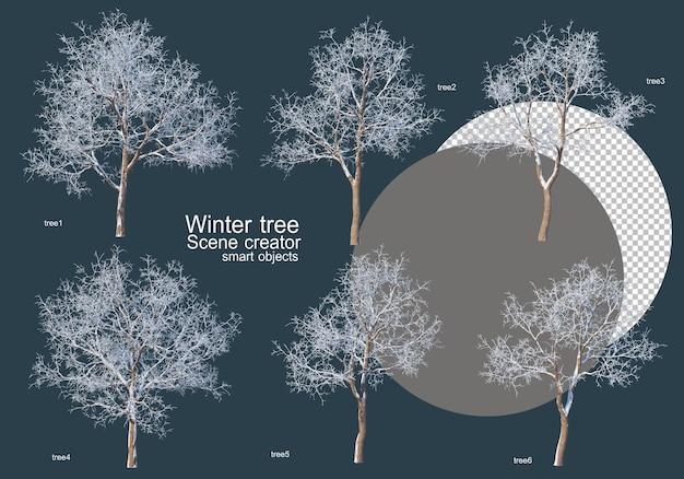 Wiele Rodzajów Drzew Zimą Premium Psd