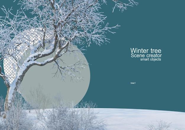 Wielkie drzewo na łące zimą