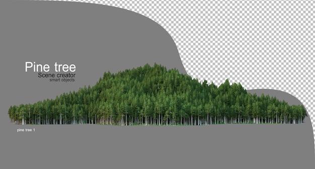 Wysoka góra z sosnami różne typy dorosłych