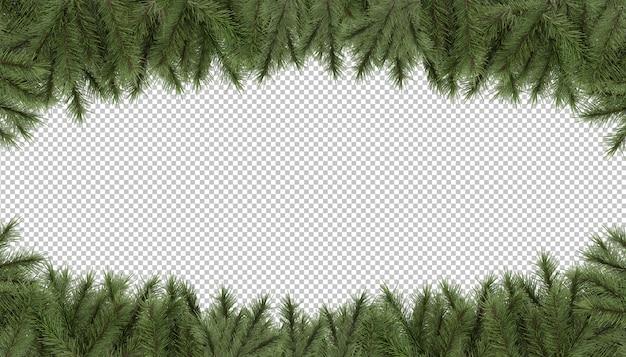 Wytnij sosnowe gałęzie rama tło