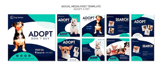 Zaadoptuj kolekcję postów ze zwierzakiem na instagramie