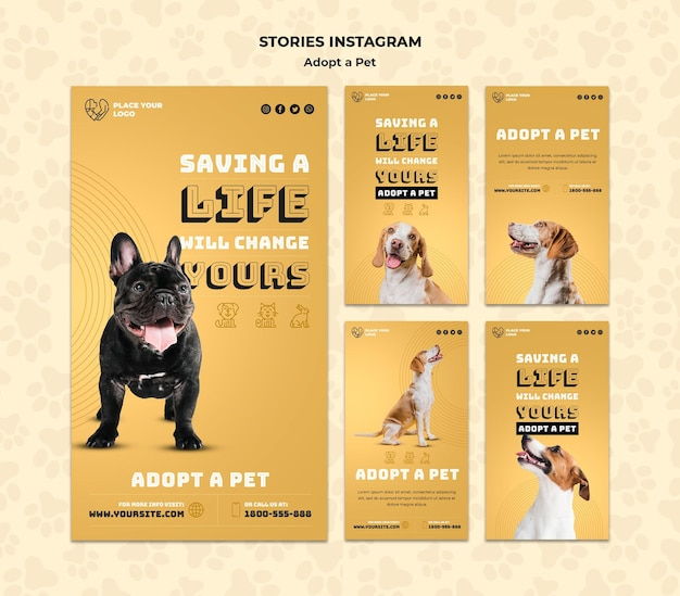 Zastosuj szablon opowiadań instagramowych dla zwierząt domowych