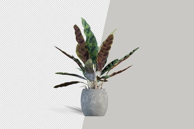 Zbliżenie na kwiaty w makiecie 3d wnętrza doniczki