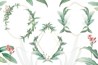Zestaw puste ramki z zielonym liściem