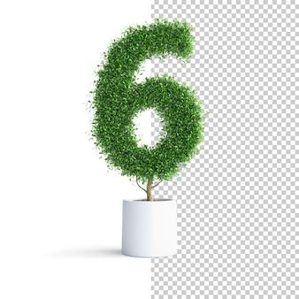 Zielone Drzewo Numer 6 Premium Psd