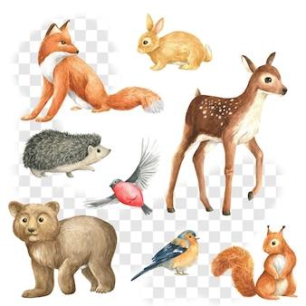 Zwierzęta dziki las akwarela zestaw ilustracji na białym tle lis wiewiórka jeleń zając ptak jeż psd