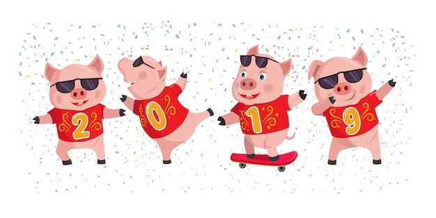 2019 roku świni