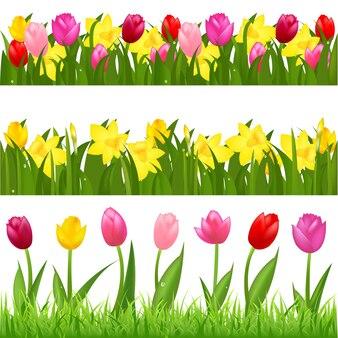 3 obramowania kwiatów tulipanów i narcyzów, na białym tle na białym tle,