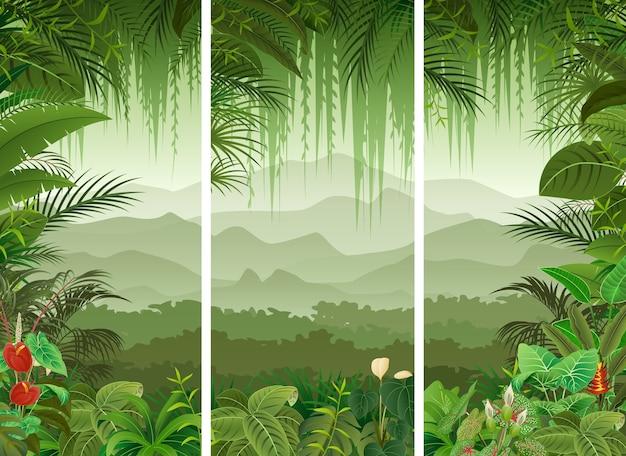 3 pionowe banery zestaw tle lasu tropikalnego