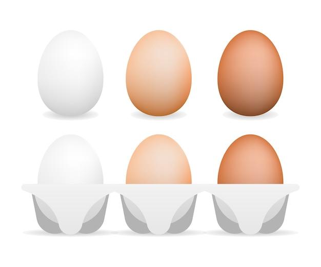 3d realistyczne agy wektorowe. płaska ilustracja. zdrowy posiłek. naturalny produkt. gotowanie jedzenia.