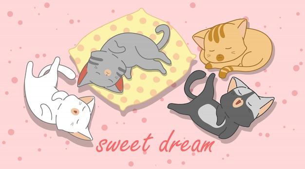 4 małe koty śpią.