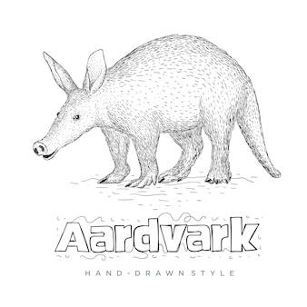 Aardvark ręcznie rysowane ilustracji zwierząt