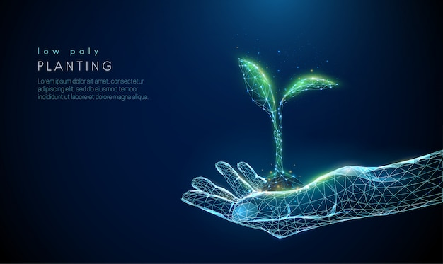 Abstrakt daje ręce z młodą rośliną w ziemi.