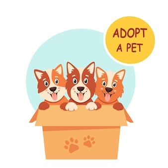 Adoptuj zwierzaka. śliczne szczenięta w pudełku. ilustracja w stylu płaski.