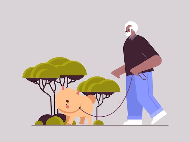 Afroamerykanin starszy mężczyzna spacerujący w parku ze swoim małym psim dziadkiem relaksującym się ze zwierzakiem
