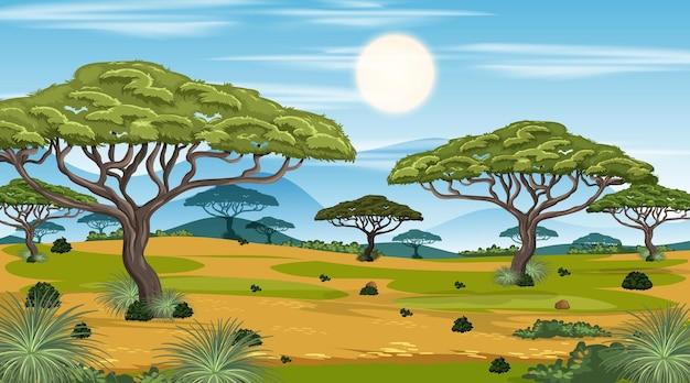 Afrykańska sawanna las krajobraz scena w czasie dnia